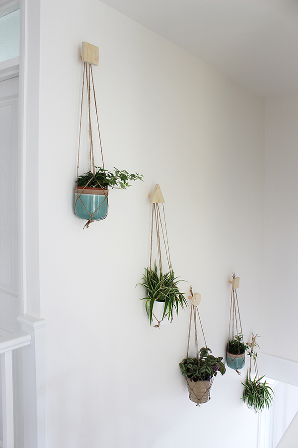 http-www-growingspaces-net201604how-to-create-a-wall-of-plants